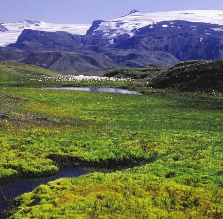 Foto vom Eyjafjallajökull Island